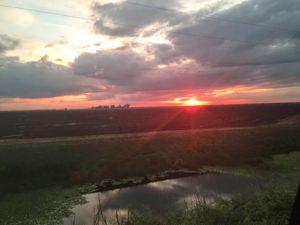 Everglades+sunset2