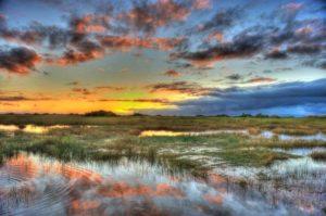 everglades+sunset