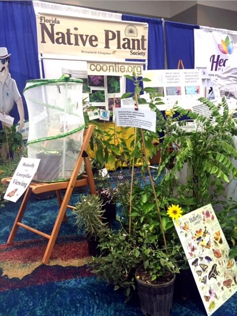 native+plants